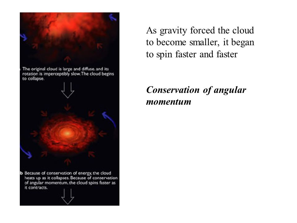 As gravity causes cloud to shrink, its spin increases Conservation of angular momentum