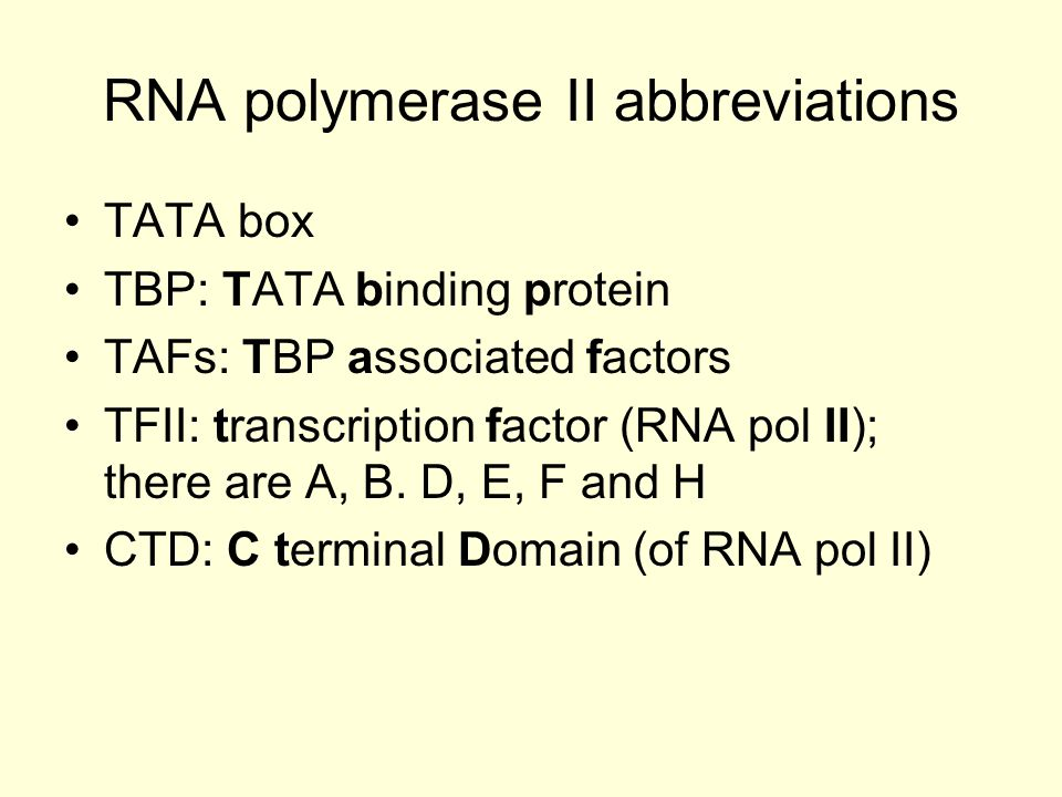RNA polymerase II DNA TATA Start site TBP TAFs TFIID TFIIATFIIB RNA polymerase II TFIIF TFIIE TFIIH This is the basal transcription apparatus!!