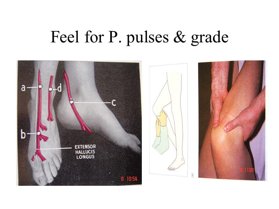Peripheral Nerves Examination - Sensory - Motor Auscultation - Bruit