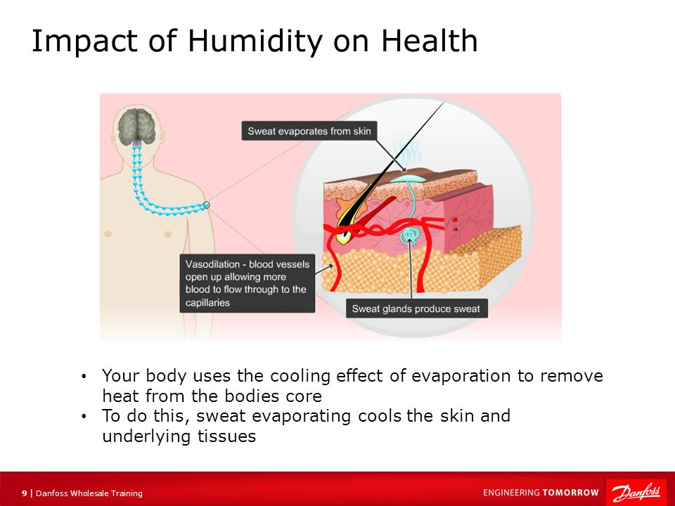 10 | Danfoss Wholesale Training Impact of Humidity on Health Capillaries carry warm blood from the bodies core outwards near the surface Here the blood flows through the cooled area, gives up heat and returns to the core