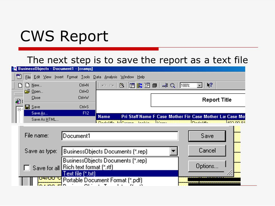 CWS Report Simply follow the Wizard being sure to look at the preview window to see that data is formatted correctly