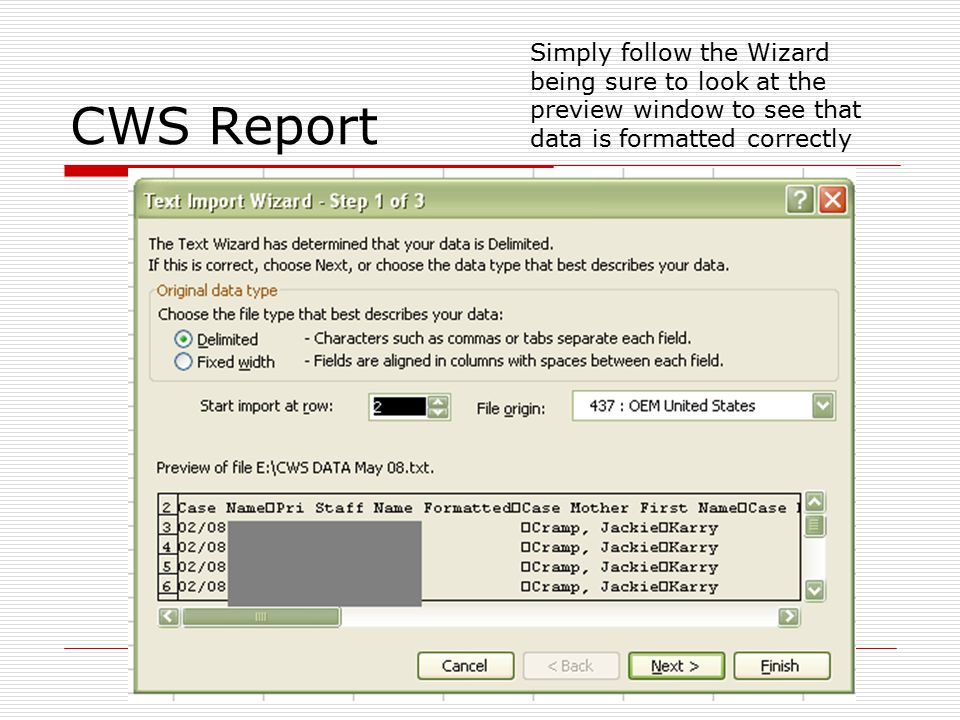 CWS Report  SSN dashes must be removed.