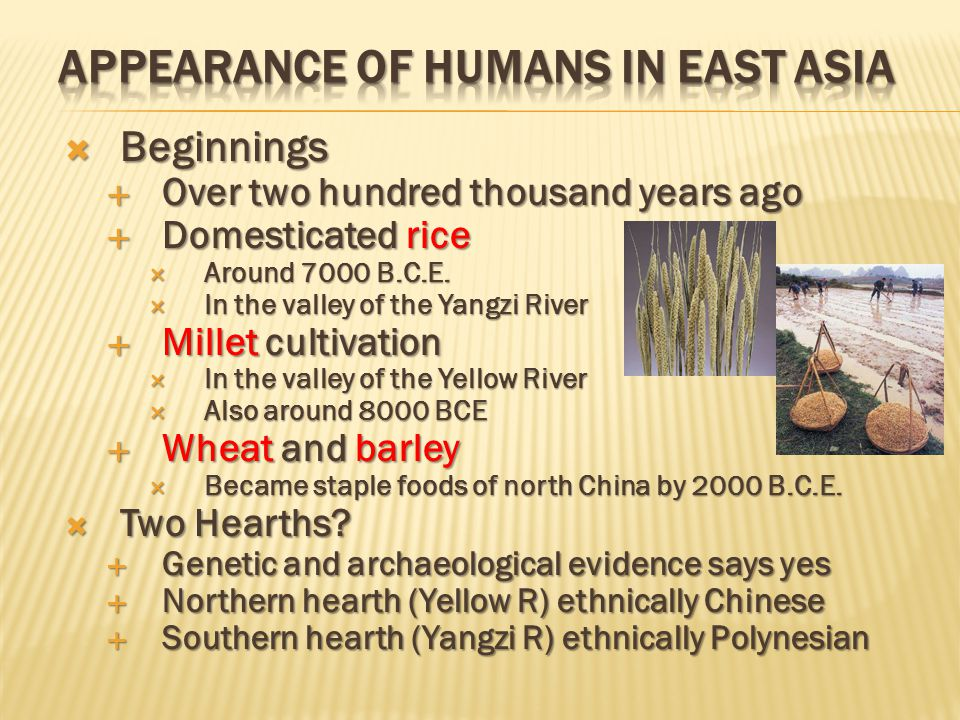  Agricultural villages  Appeared in the valleys of the two rivers  Society was patriarchal  Fathers dominated families  Elder males ruled village  Males performed religious sacrifices  Political Institutions  Towns and small states  Appeared in north China during 2 nd millennium B.C.E.