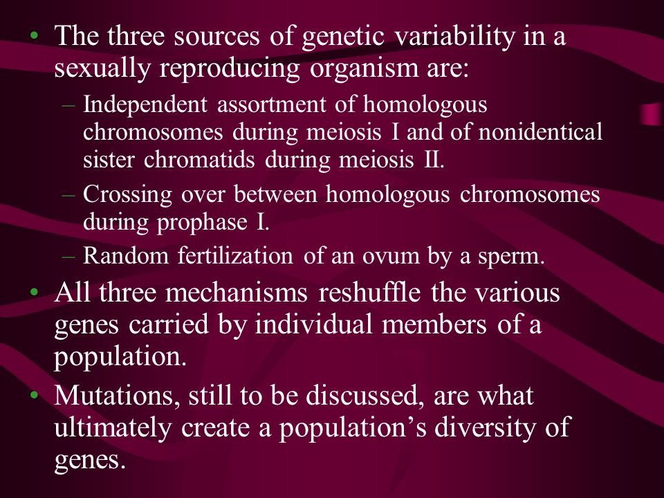 Darwin recognized the importance of genetic variation in evolution via natural selection.