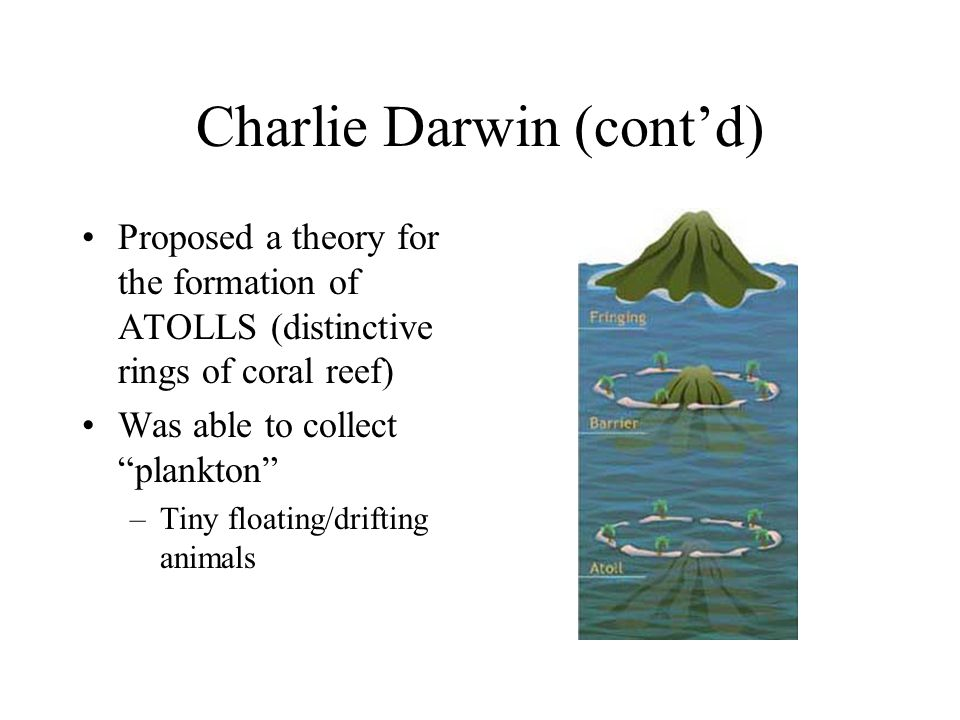 Charlie Darwin (cont'd) Proposed a theory for the formation of ATOLLS (distinctive rings of coral reef) Was able to collect plankton –Tiny floating/drifting animals