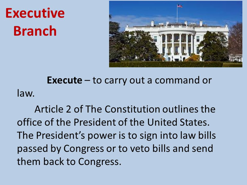 Executive Branch As chief executive, the President's job is to make sure all of the laws are enforced and to keep the government running smoothly.