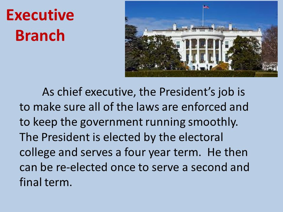 Executive Branch The executive branch includes the President, Vice-president and the Cabinet.
