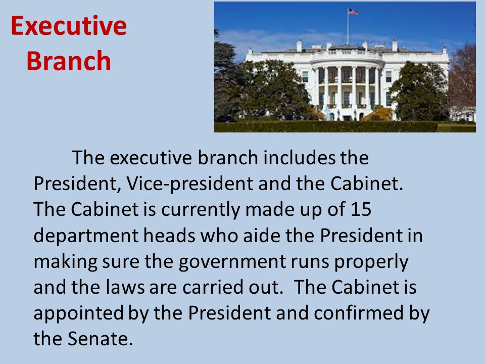 Executive Branch The executive branch has the power to: Enforce the law Make treaties with other countries Collect taxes The President also has to report to the Congress on the State of the Union from time to time.