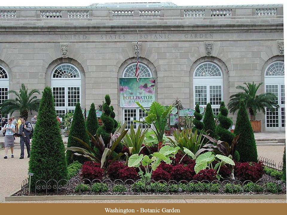Washington - Botanic Garden