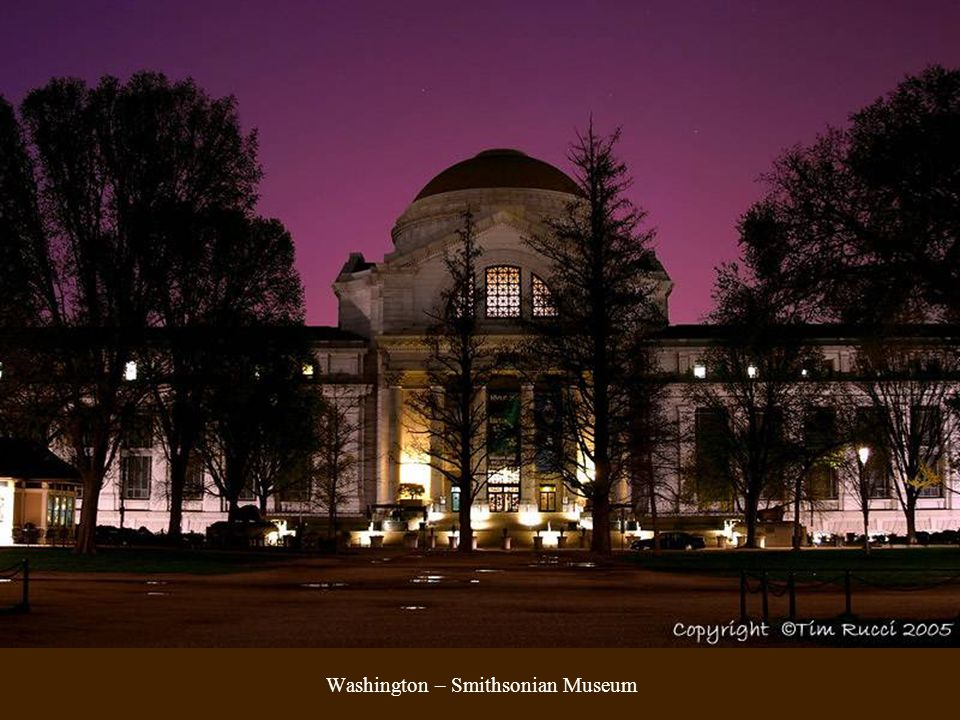 Washington – Smithsonian Museum
