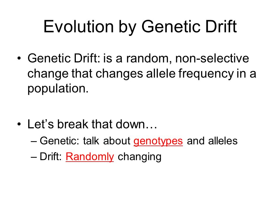 Genetic Drift Reading 10 min per page Must have AT LEAST 5 comments/pictures/questions in the margin of each page for a stamp Read for mastery, not speed!
