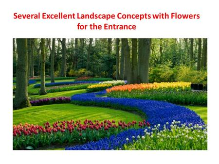 Several Excellent Landscape Concepts with Flowers for the Entrance.