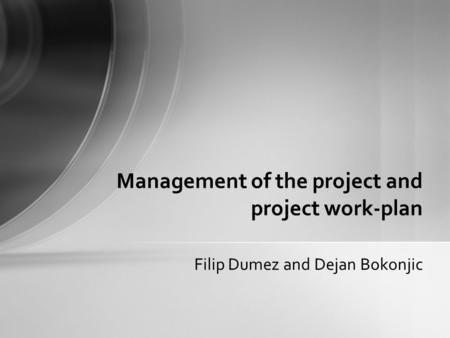 Filip Dumez and Dejan Bokonjic Management of the project and project work-plan.