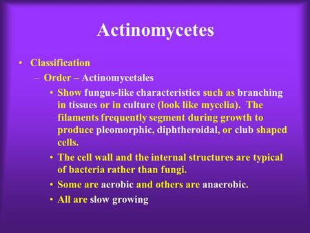Actinomycetes Classification –Order – Actinomycetales Show fungus-like characteristics such as branching in tissues or in culture (look like mycelia).