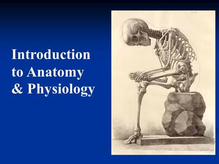 Introduction to <strong>Anatomy</strong> & <strong>Physiology</strong>. Course Description: It is an introduction to the study of the structure <strong>and</strong> function of the human body. This course.