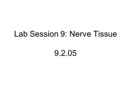 Lab Session 9: Nerve Tissue x Slide # 7 NH: Spinal (sensory) Ganglion (LFB-NR) 100x Pseudounipolar neurons Satellite cells Nissl granules (RER)