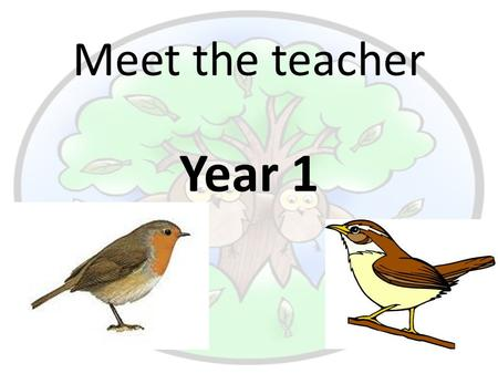 Meet the teacher Year 1. Meet the Year 1 team… Robin Class Miss du Toit Class Teacher Miss Diver Teaching Assistant Miss Milham Teaching Assistant Mrs.