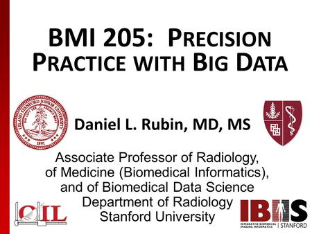 BMI 205: P RECISION P RACTICE WITH B IG D ATA Daniel L. Rubin, MD, MS Associate Professor of Radiology, of Medicine (Biomedical Informatics), and of Biomedical.