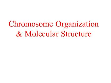 Chromosome Organization & Molecular Structure. Chromosomes & Genomes Chromosomes complexes of DNA & proteins – chromatin Viral – linear, circular; DNA.