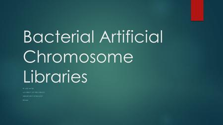 Bacterial Artificial Chromosome Libraries BY JOE HAYES UNIVERSITY OF NEW MEXICO DEPARTMENT OF BIOLOGY BIO446.