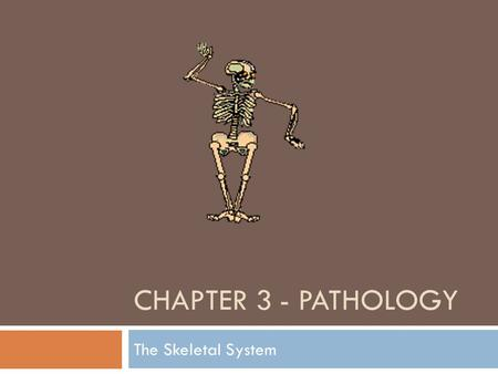 CHAPTER 3 - PATHOLOGY The Skeletal System. Medical Specialties related to the Skeletal System  Chiropractor (DC)  Holds a Doctor of Chiropractic Degree.