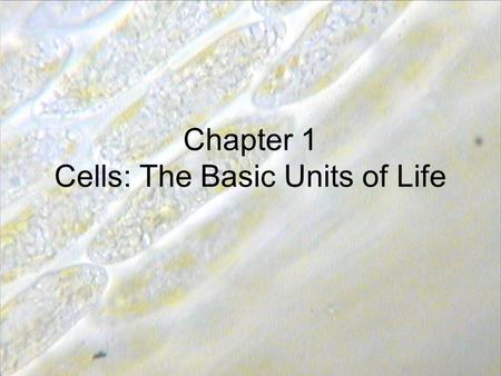 Chapter 1 Cells: The Basic Units of Life. Cells Tissues Organ (stomach, heart, lungs, skin) Organ systems (nervous system, digestive system Organism.