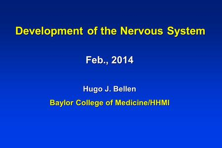 Development of the Nervous System Feb., 2014 Hugo J. Bellen Baylor College of Medicine/HHMI.