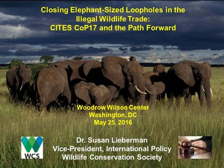 Closing Elephant-Sized Loopholes in the Illegal Wildlife Trade: CITES CoP17 and the Path Forward Woodrow Wilson Center Washington, DC May 25, 2016 Dr.