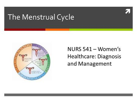  The Menstrual Cycle NURS 541 – Women's Healthcare: Diagnosis and Management.