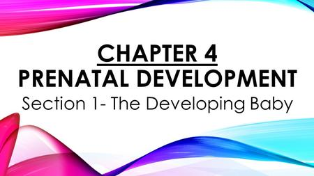 CHAPTER 4 PRENATAL DEVELOPMENT Section 1- The Developing Baby.