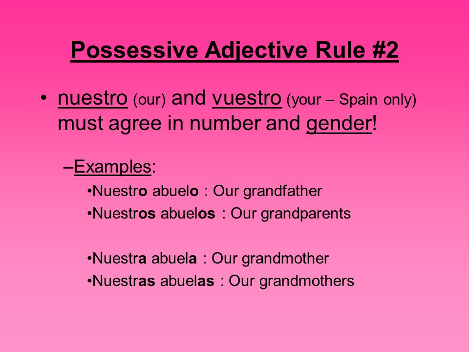 Possessive Adjective Rule #2 nuestro (our) and vuestro (your – Spain only) must agree in number and gender.