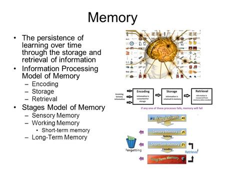 Memory The persistence of learning over time through the storage and retrieval of information Information Processing Model of Memory –Encoding –Storage.