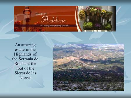 An amazing estate in the Highlands of the Serrania de Ronda at the foot of the Sierra de las Nieves.