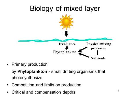 Biology of mixed layer Primary production by Phytoplankton - small drifting organisms that photosynthesize Competition and limits on production Critical.