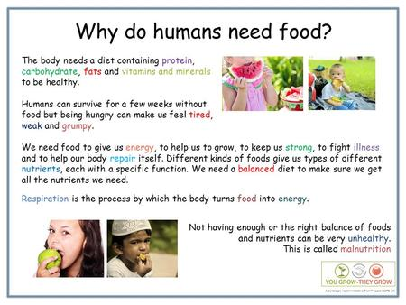 Why do humans need food? The body needs a diet containing protein, carbohydrate, fats and vitamins and minerals to be healthy. Humans can survive for a.