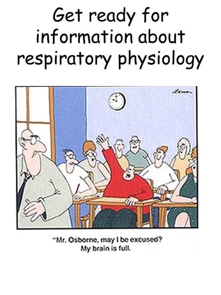Get ready for information about respiratory physiology.