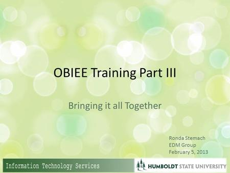 OBIEE Training Part III Bringing it all Together Ronda Stemach EDM Group February 5, 2013.