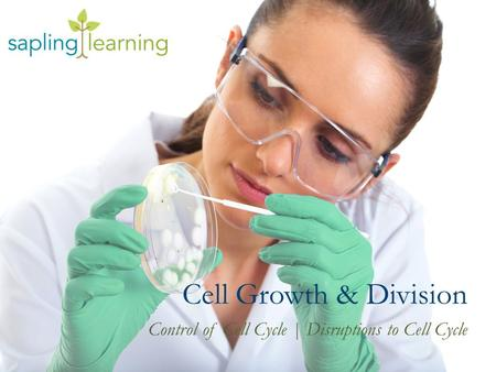 Cell Growth & Division Control of Cell Cycle | Disruptions to Cell Cycle.