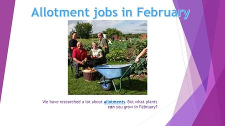 We have researched a lot about allotments. But what plants can you grow in February?allotments.