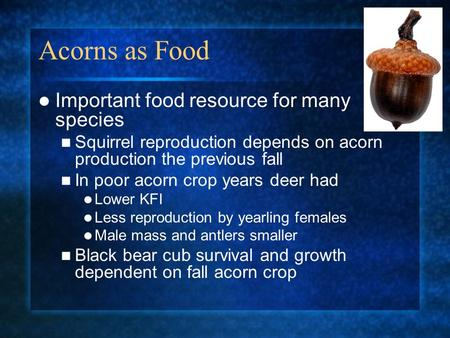 Acorns as Food Important food resource for many species Squirrel reproduction depends on acorn production the previous fall In poor acorn crop years deer.