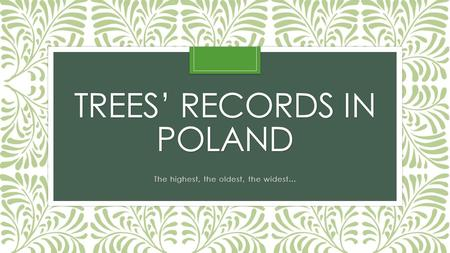 TREES' RECORDS IN POLAND The highest, the oldest, the widest…