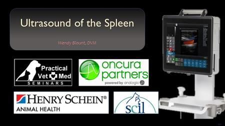 Free PowerPoint Templates Ultrasound of the Spleen Wendy Blount, DVM.