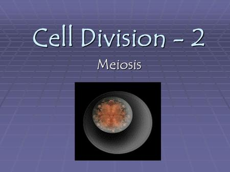Cell Division - 2 Meiosis. Meiosis  Meiosis occurs in sexual reproduction when a diploid germ cell produces four haploid daughter cells that can mature.