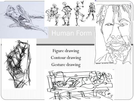 Figure drawing Contour drawing Gesture drawing Human Form.