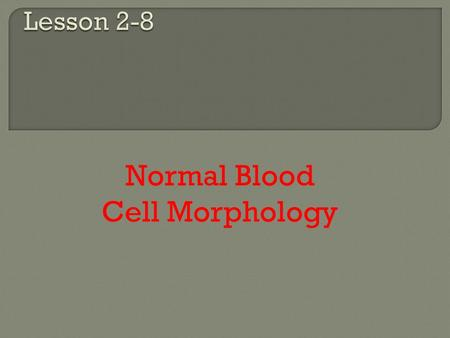 Normal Blood Cell Morphology.  Safety precautions  Quality assessment  Use oil immersion.