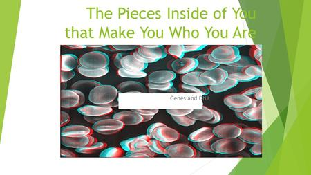 The Pieces Inside of You that Make You Who You Are Genes and DNA.
