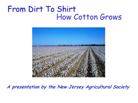 A presentation by the New Jersey Agricultural Society From Dirt To Shirt How Cotton Grows.