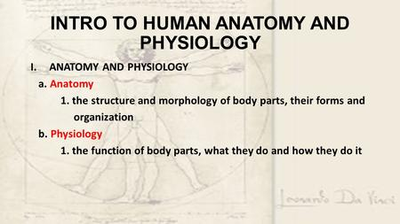 INTRO TO HUMAN ANATOMY AND PHYSIOLOGY I.ANATOMY AND PHYSIOLOGY a. Anatomy 1. the structure and morphology of body parts, their forms and organization b.
