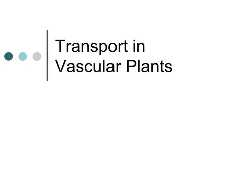 Transport in Vascular Plants. Why does transport need to occur? Materials need to be transported between the root system and the shoot system.