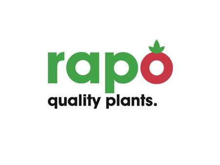 Rapo  Werner Hack / Marielle Nagtzaam  founded 40 years ago  clients all over Europe  3 seasons  member of Fresh Forward (Fragaria)  over 120 hectares.